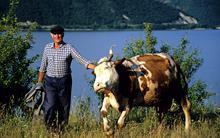 romania-farmer.jpg?itok=idILdJZp