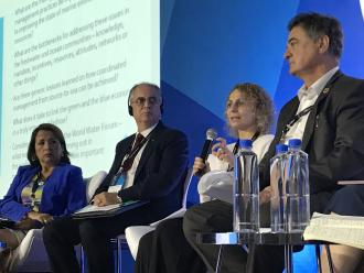 "8th World Water Forum in Brazil: ICPDR contributes to the rigorous discussion surrounding regional processes and this forum's theme: ""Sharing Water""."