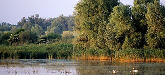 IRF European Riverprize call for 2015 applications