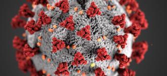 cdc-coronavirus-image-23311-for-web.jpg?itok=hmnxADfk