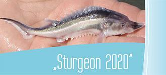 Sturgeon 2020 published in print